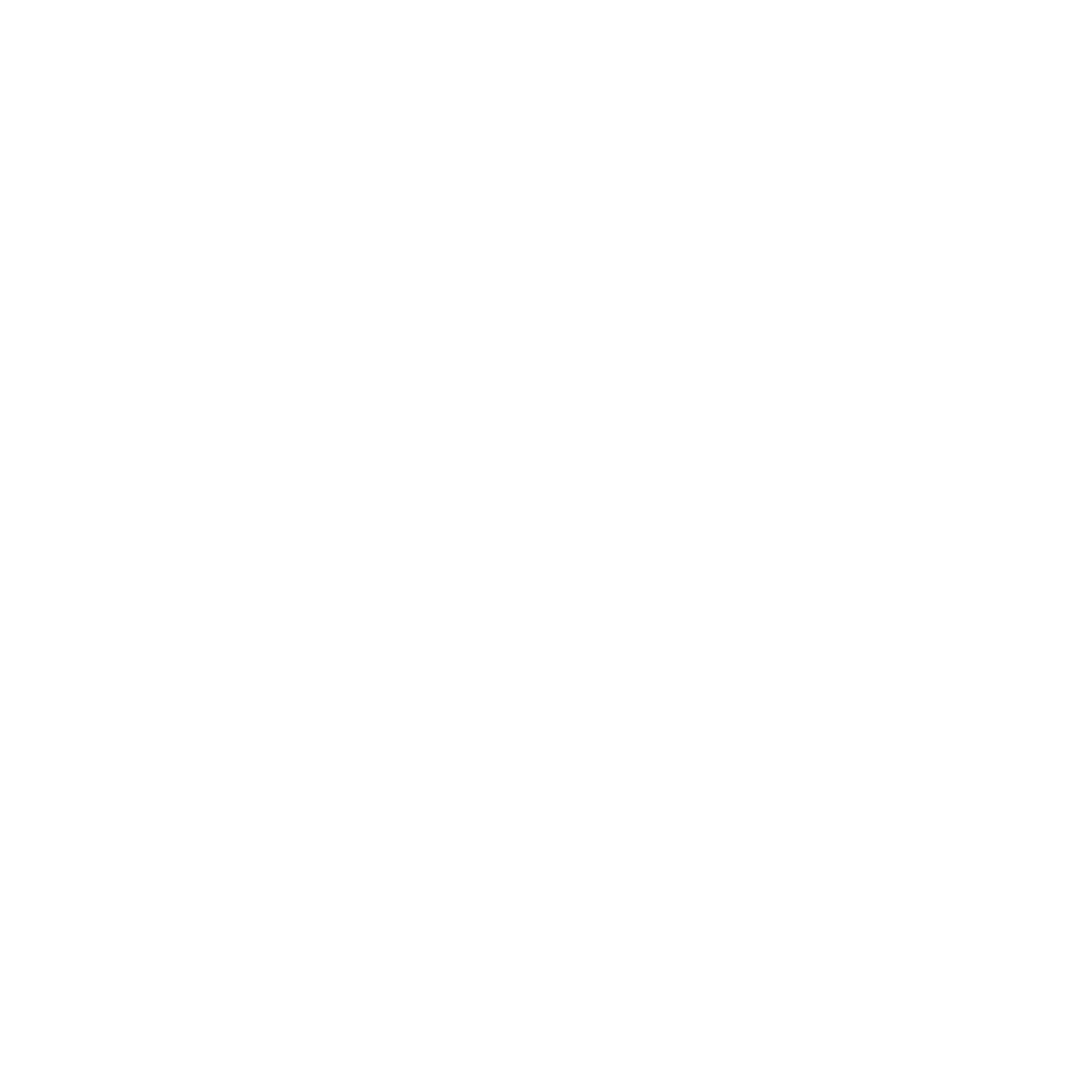 Ascent Fostering Agency